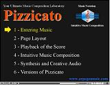 Pizzicato video